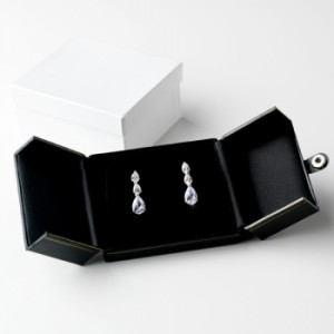 earring box with special wings