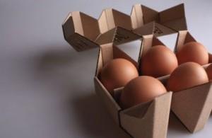 6 egg cardboard egg boxes
