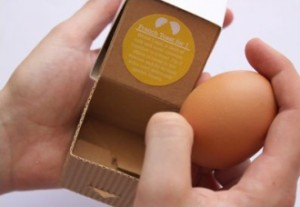 single egg box with corrugated paper